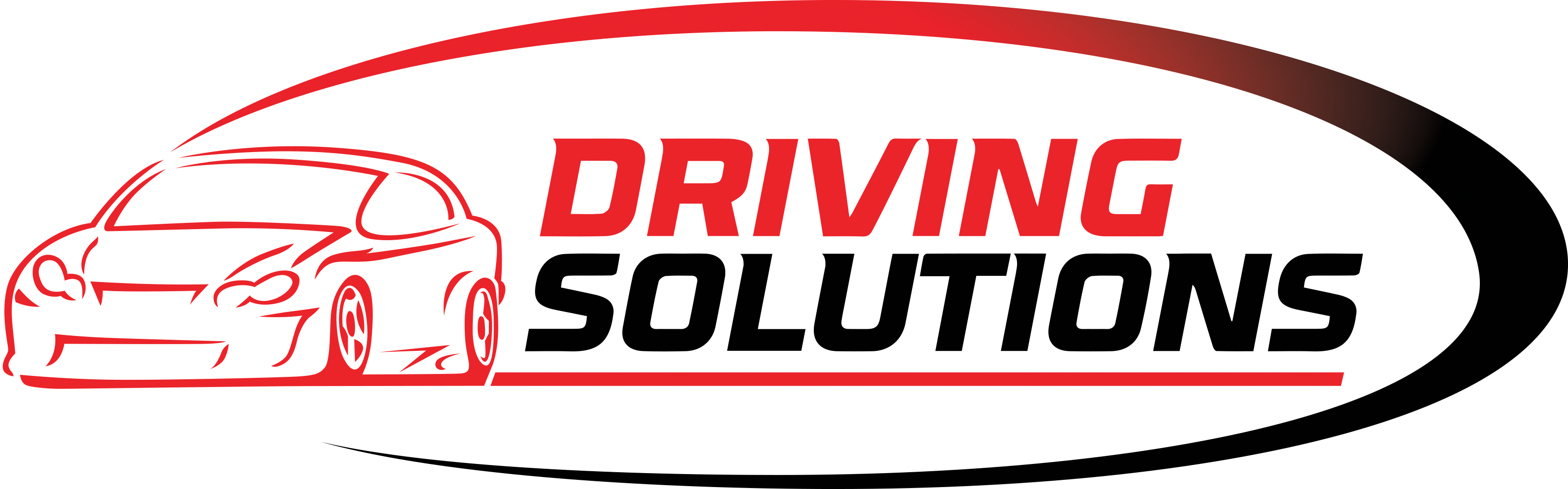 driving-solutions-logo